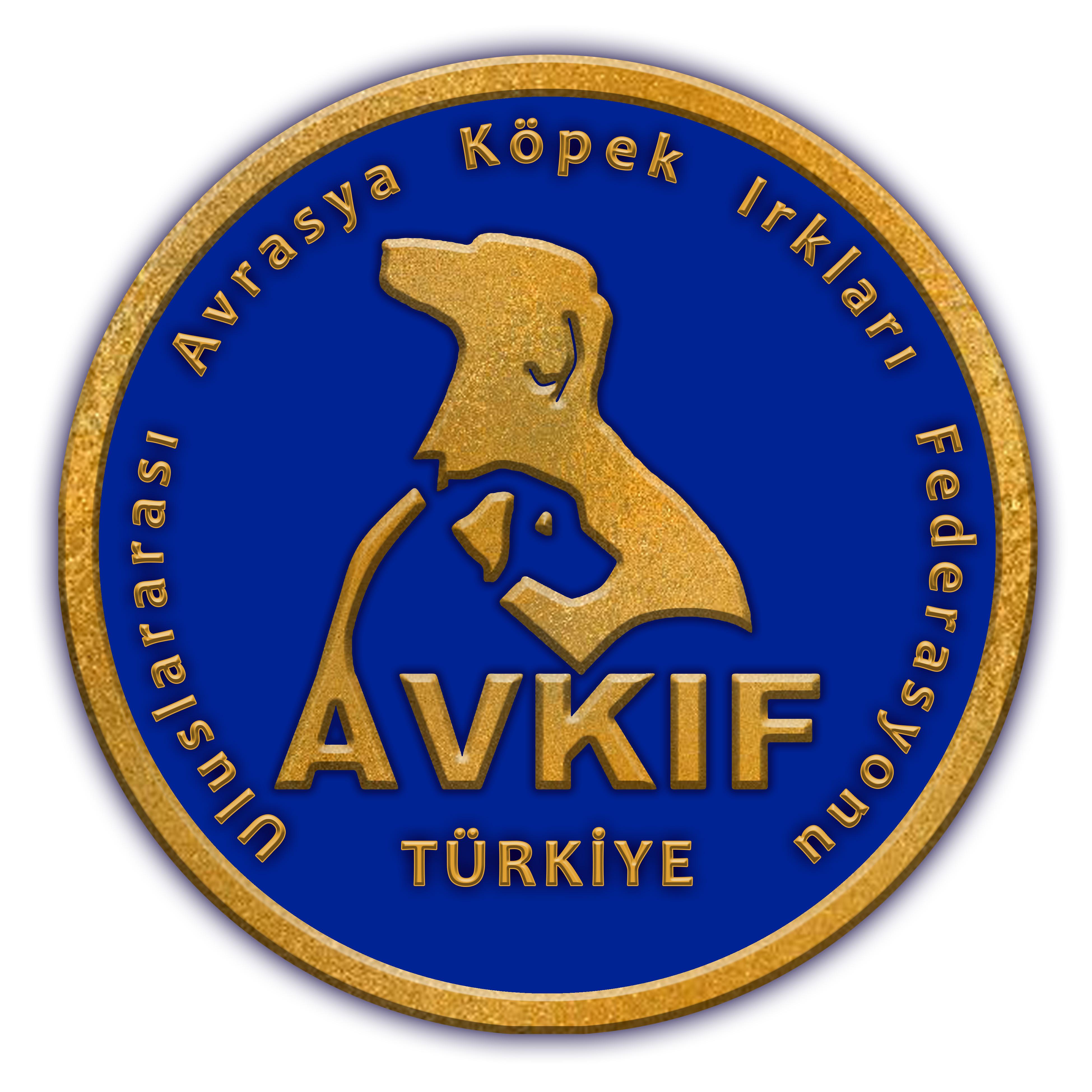avkif-logo-altin-son