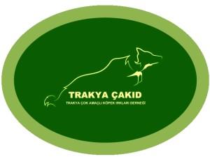 trakya-cakid