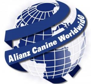alianz ACW - AVKIF