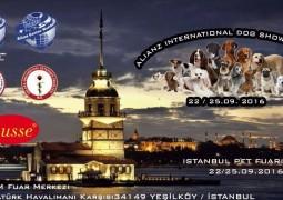 ALIANZ INTERNATIONAL DOG SHOW ISTANBUL 22-25. 09(EYLÜL) 2016