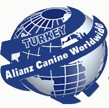 alianz logo yenin