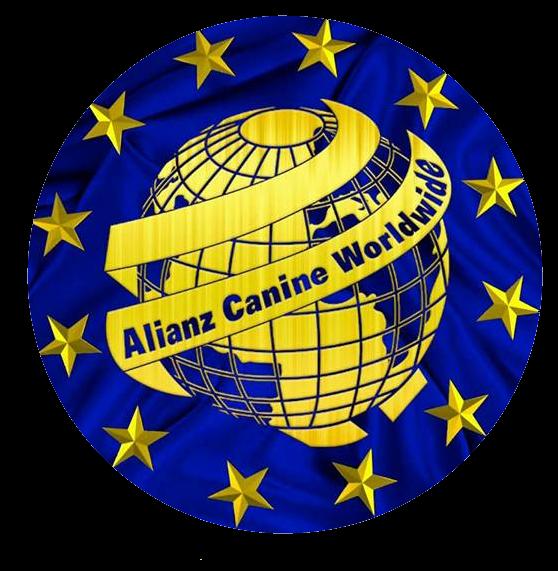 alianz-yeni-logo