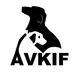 AVKIF Resmi Logosu
