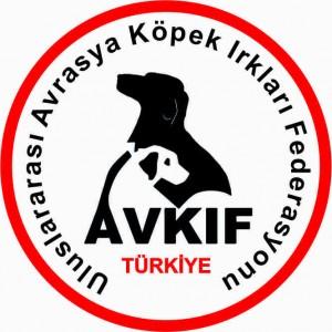avkif_yeni_logo