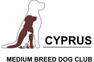 cyprusmediumbreeddog