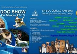 DOG SHOW KIBRIS 2015
