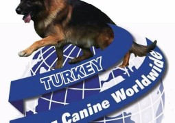 ALIANZ TURKEY 2016 – GERMAN SHEPHERD DOG EUROPEAN CHAMPIONSHIP