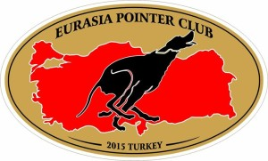 pointer-club-logo