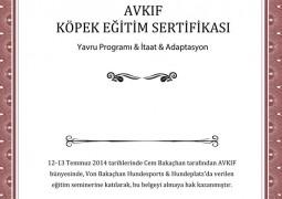 AVKIF KÖPEK EĞİTİMİ SEMİNERİ HK.